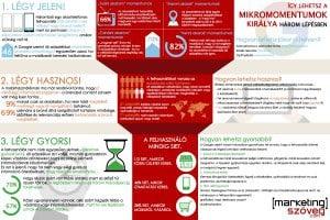 mikromomentum infografika